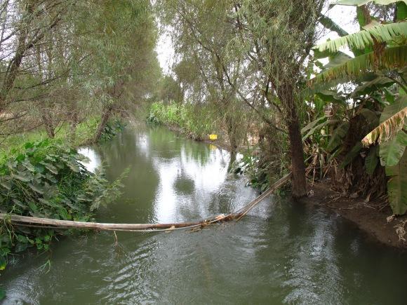 the rio.