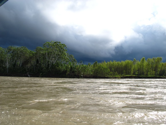 we eventually headed 4 more hours down the river to stay at the tambopata research center. it was one of the most incredible places i have been to. it was so tranquil and beautiful. on our boat ride there, there was quite the rain storm brewing.